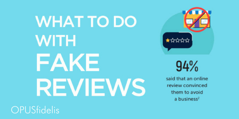 fake reviews infographic