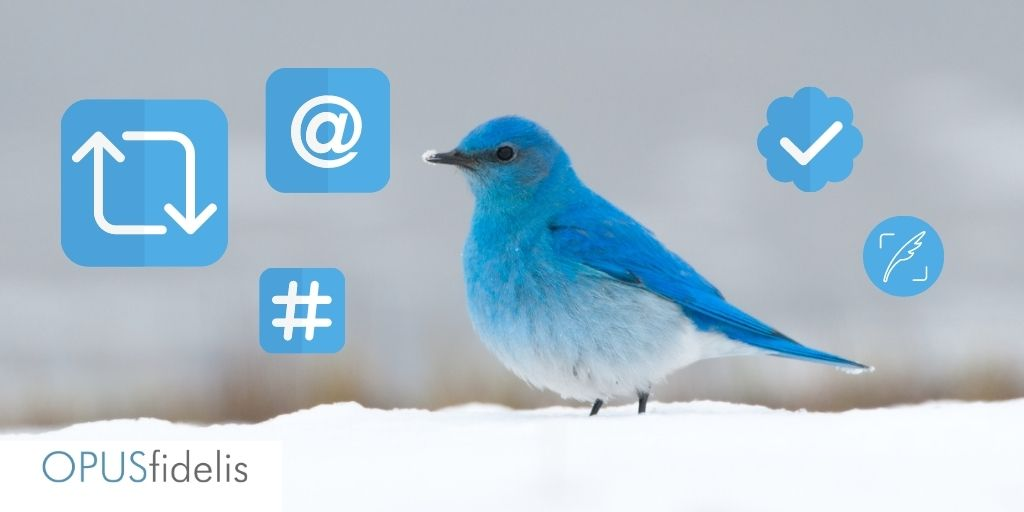 Twitter update image