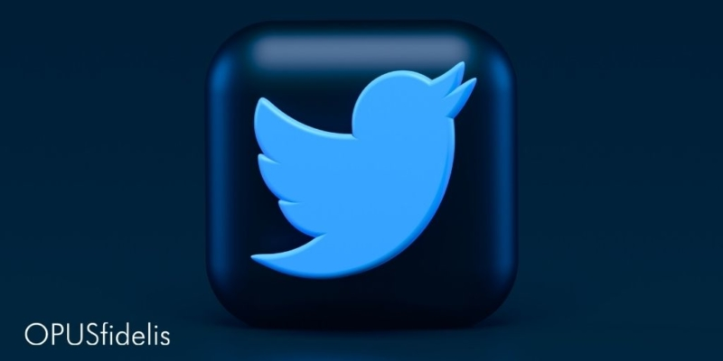 Twitter icon on cube